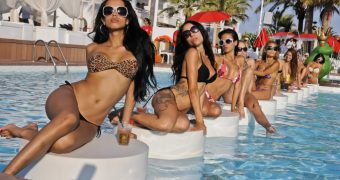 Miami escorts and Miami escort models posing at the South Beach swimming pool