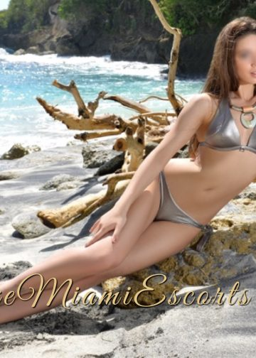 Katie is posing on a beach rock in her sexy silver swim suit, what a hot Miami escort girl